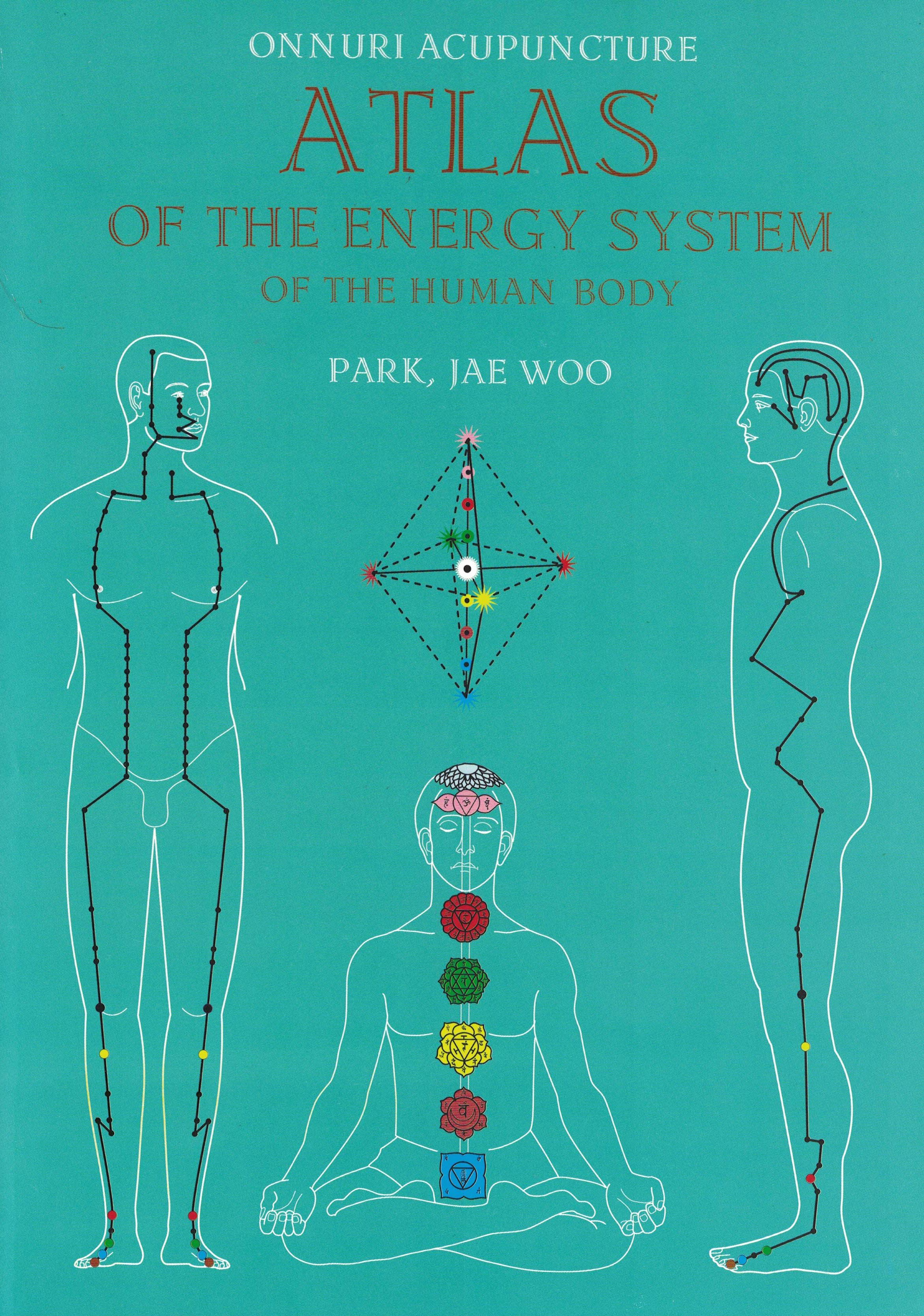 atlas of the energy system of the human body books su jok needles and acupuncture corporal Sujok Points Su Jok Therapy Seed
